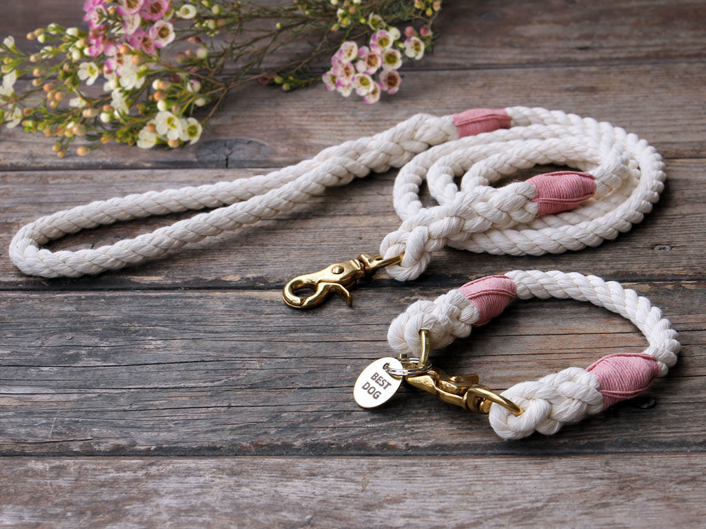 Best Dog Cotton Rope Leash and Rope Dog Collar